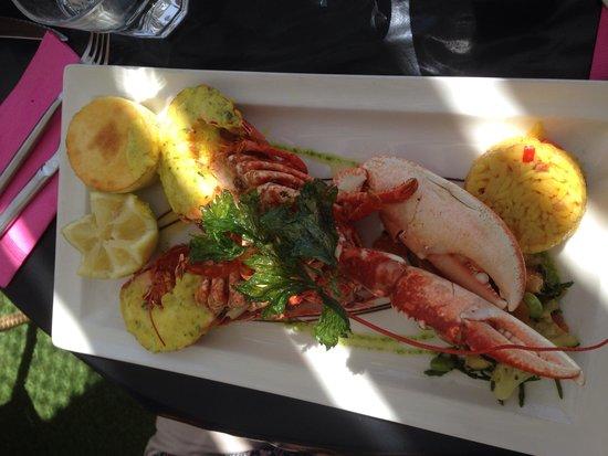 Le Sud : Assiette de homard
