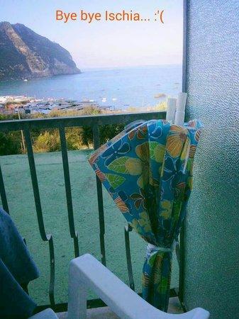 Hotel Citara: Vista camera