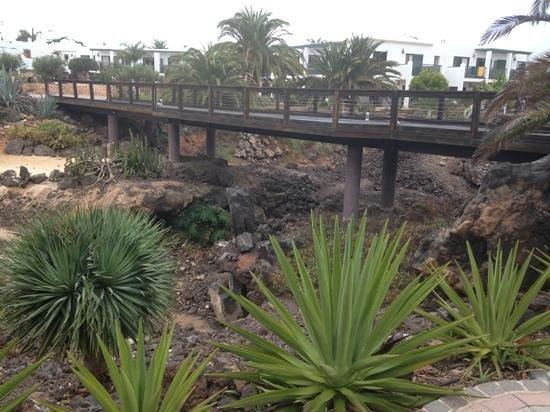 Las Marismas de Corralejo: nicely landscaped area