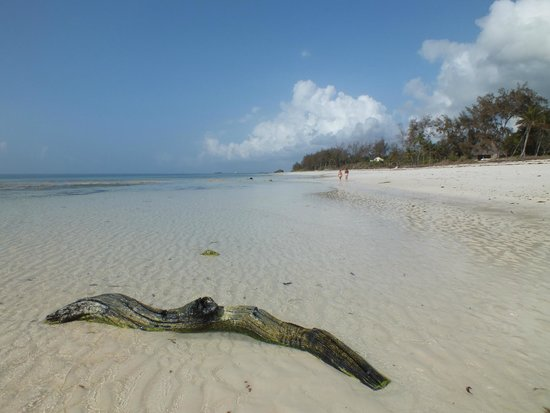 Hemingways Watamu: walk along beach to the right of hotel