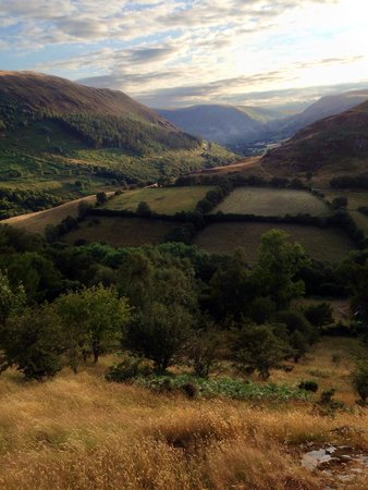 Gilfach Nature Reserve: View over valley