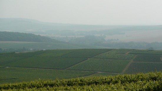 Mutigny, Frankrig: View in the area