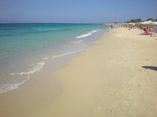 Plaka Beach: vista