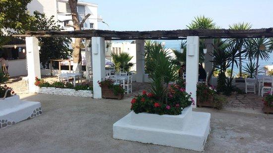 Hotel Saranda : Terrazza