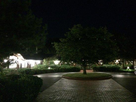 Hotel du Parc: Extérieur