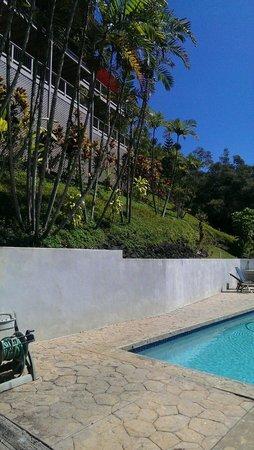 Marjorie's Kauai Inn: View from beyond