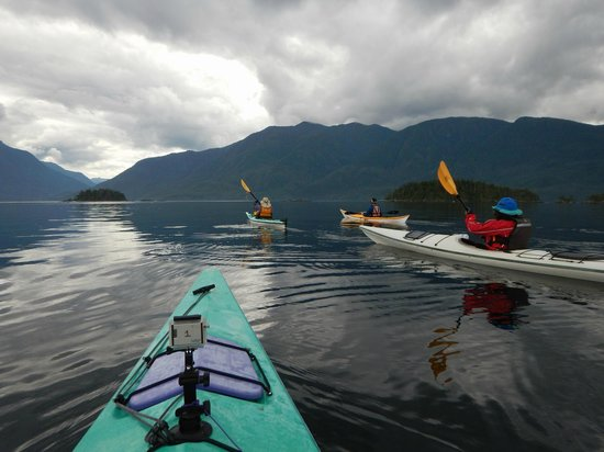 Discovery Expeditions Day Tours: Evening paddle