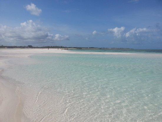 Eden Village Watamu Beach : il mare con la bassa marea