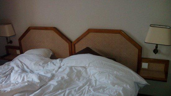 Hotel du Centre et du Lauragais: chambre 50€
