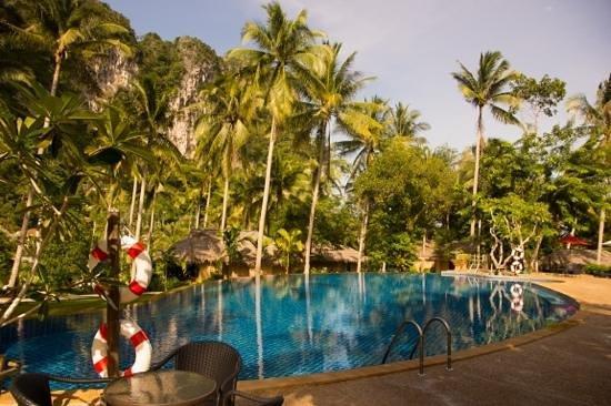 Ban Sainai Resort : Pool