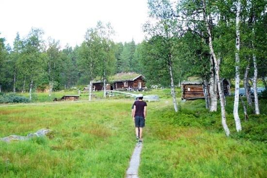 Drevsjø, Norge: Bilde fra Gutulisætra i Gutulia nasjonalpark med servering av saft, kaffe, og vafler i sommerhal
