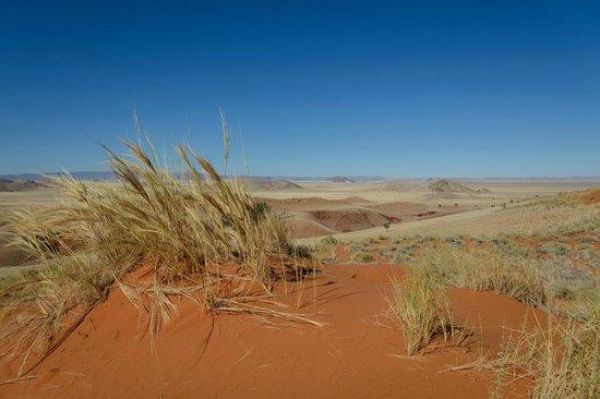 Tsondab Valley Scenic Reserve: Rückweg vom Canyon über die Dünen