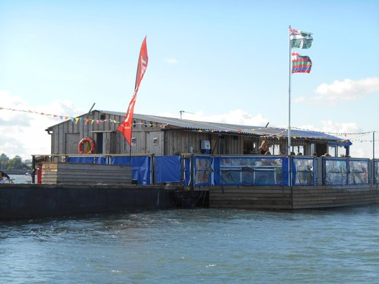 River Exe Cafe: view from the water taxi
