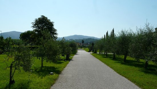 Villa Olmi Firenze : Great gardens with lot of fruit trees. Really relaxing and romantic