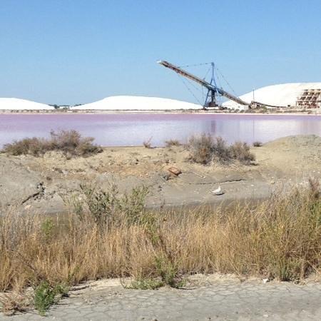 Salin d'Aigues-Mortes : la visite des salins... magie rose