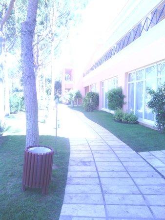 Hipotels Barrosa Garden: camino exterior entre buffet-piscinas