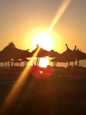 Vincci Marillia: 5.30am on the beach