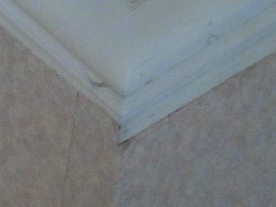 Hotel de Provence: les toiles d'araignées du plafond (même haut, un plafond ça se nettoie)