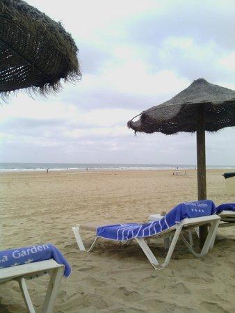 Hipotels Barrosa Garden: hamaca playa
