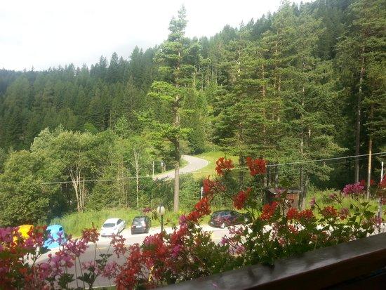 Family & Wellness Hotel Shandranj : Panorama dalla camera