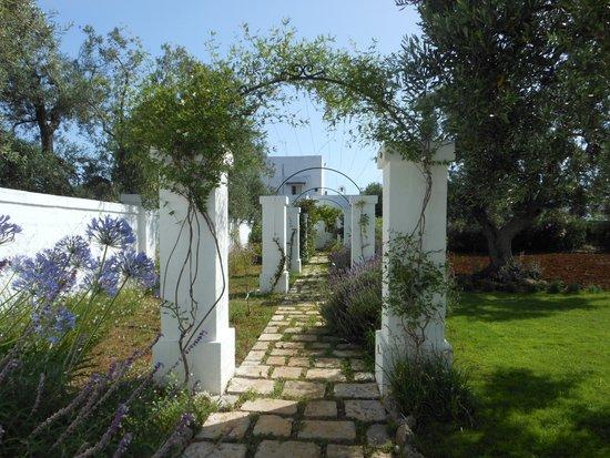 Masseria Bianca di Puglia: Il giardino
