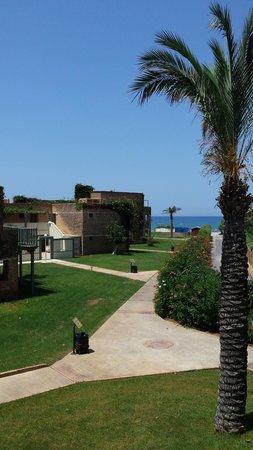 Bella Beach Hotel : nice garden