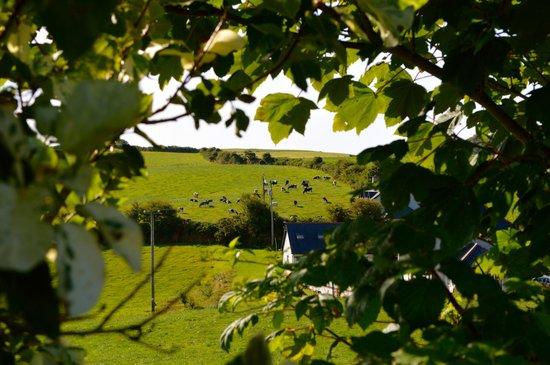 View from Ard Na Greine