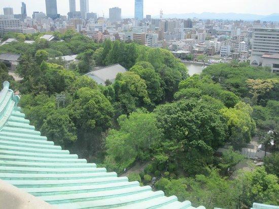 Nagoya Castle : 名古屋城20