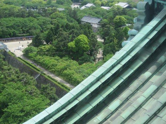 Nagoya Castle : 名古屋城8