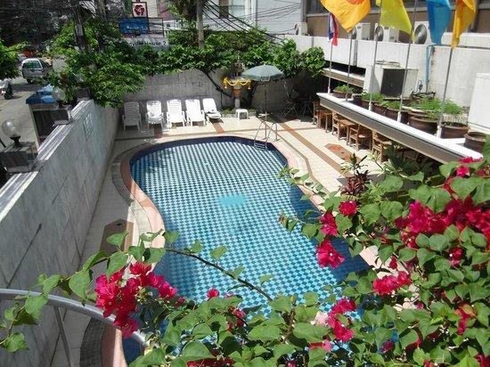 Honey Hotel : Pool