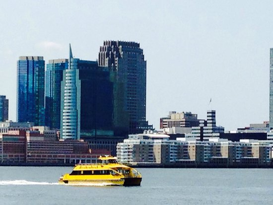 New York Water Taxi: Water Taxi