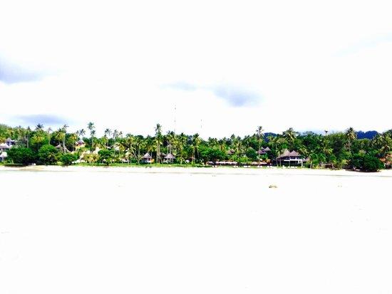 The Vijitt Resort Phuket: 遠浅のビーチで朝と夜はどこまでも砂浜を歩けます。カニがちょこちょこいて楽しめますo(^▽^)o この写真は海からホテルを撮りました!