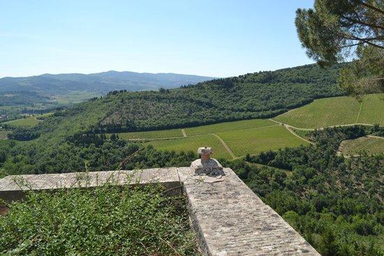 Castello Vicchiomaggio: Amazing view
