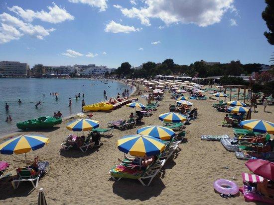 Intertur Hotel Miami Ibiza : Beach directly outside the hotel