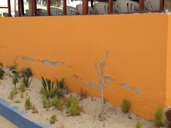 Caribbean World Thalasso Djerba - Lookéa Playa Djerba : Entertainment centre