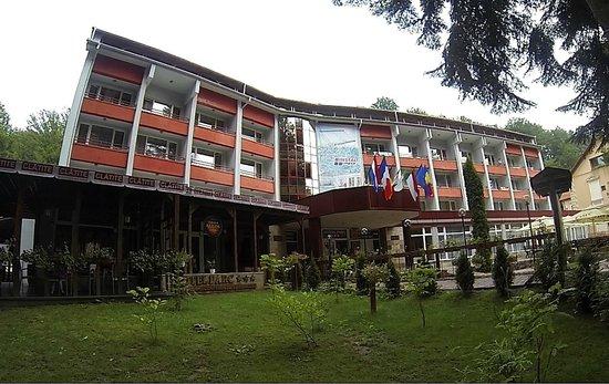 Hotel Parc Moneasa
