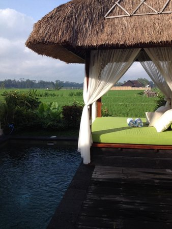 Alam Puisi Villa : Private pool and view