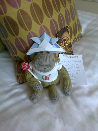 Holme Lacy, UK: Monkey in his party hat made by Lesley.