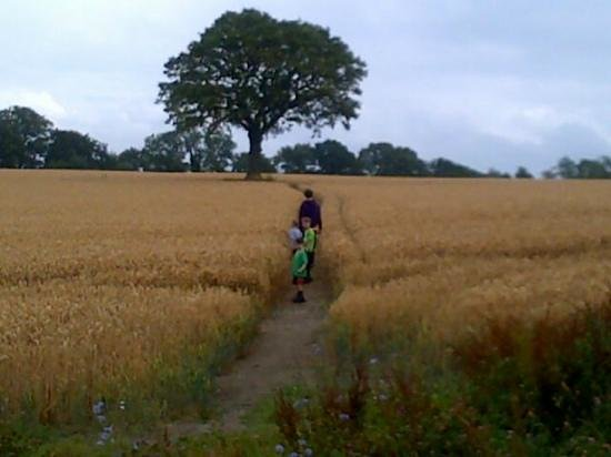 Feather Down Farm at Manor Farm: walk to the three horseshoes