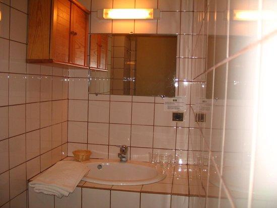 Hotel-Restaurant de Tesse : Salle de bain...