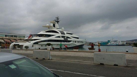 Puerto de Ibiza: Il porto