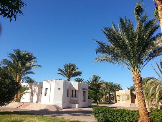 Sonesta Pharaoh Beach Resort Hurghada: rooms
