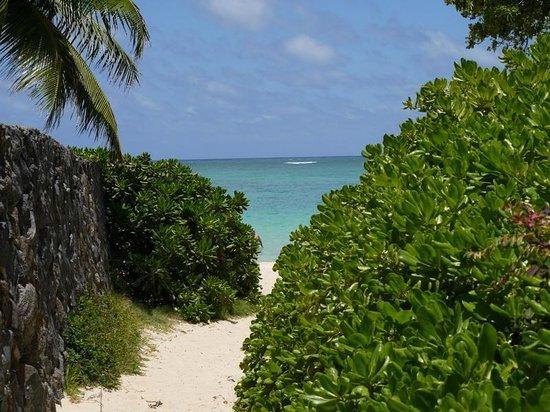 Lanikai Beach : ラニカイビーチ