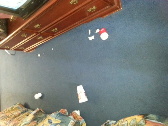 Caprice Motor Inn Branson: this was our room when we walked in