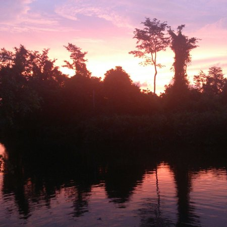 Borneo Proboscis River Lodge: Morning in Borneo