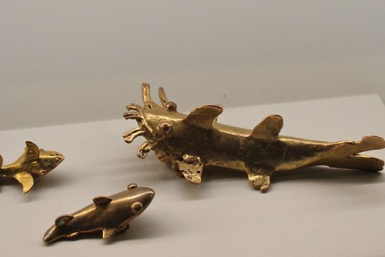 Museo del Oro Precolombino : Gold fish with whiskers