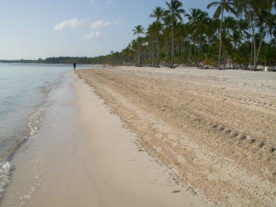 Barcelo Bavaro Beach - Adults Only : Séjour du 24/07/14 au 01/08/14