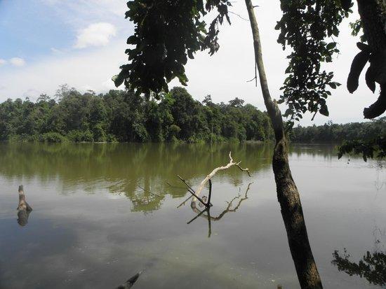 Myne Resort  |  Kampung Bilit, Kota Kinabatangan, Sabah,  Borneo