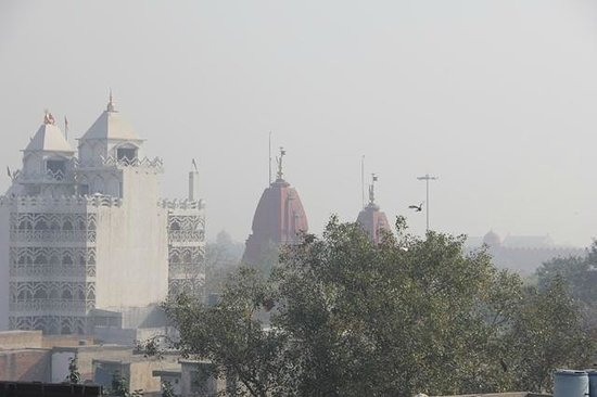 Hotel Tara Palace Chandni Chowk : Rooftop view - zoomed in