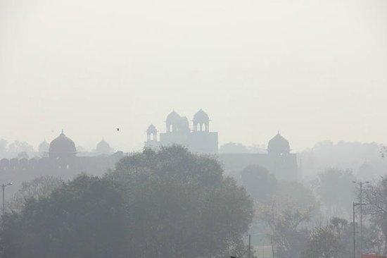 Hotel Tara Palace Chandni Chowk: Rooftop view - Sikh Gurdwara